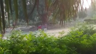 Hardcore fuck in delhi public park,tight pussy penetration